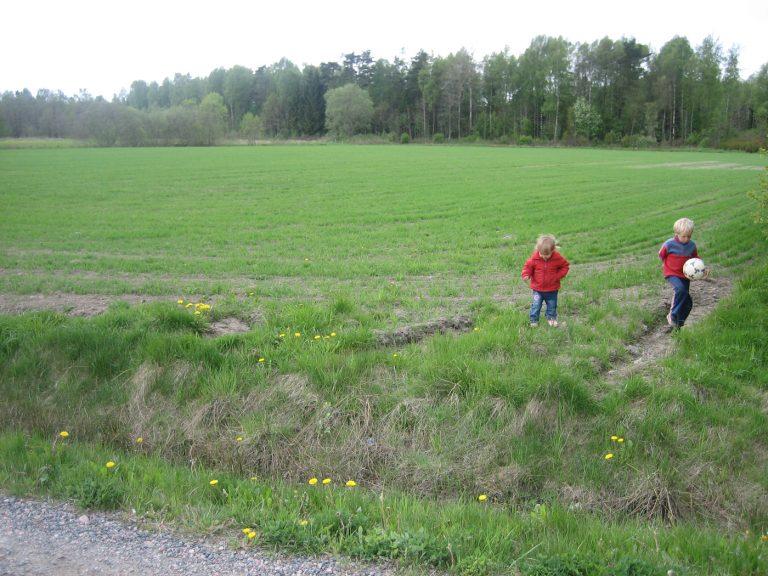 Läs mer om artikeln Ny idrottsplats i Sjövik.